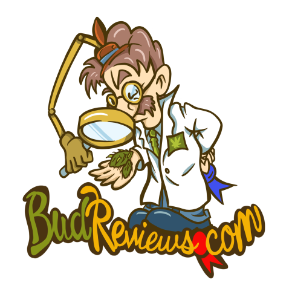 Bud Reviews